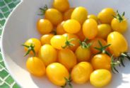 Tomato 'Ildi' - Yellow - 120 seeds - Vegetable / Fruit